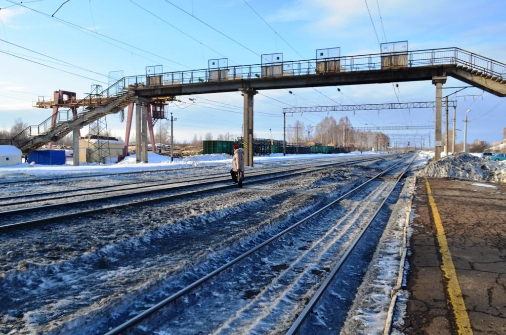 бежит перед поездом