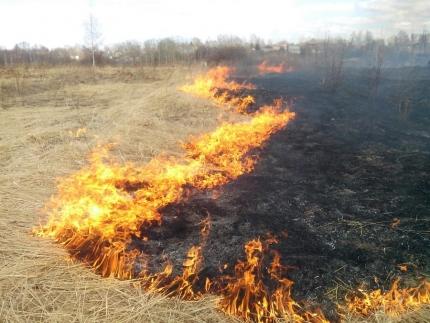 От возгорания сухой травы пострадала жительница Кировской области
