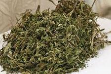 В Кировской области мужчина сдал полицейским мешок марихуаны