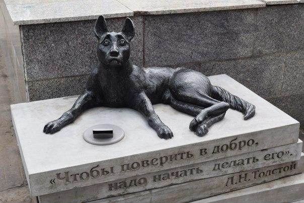 У ЦУМа в Кирове открыли памятник-копилку бездомным животным