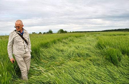 В Кировской области обнаружили круги на полях
