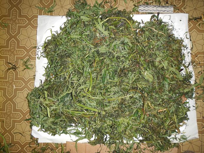 Наркополицейские нашли в заброшенном сарае 4 мешка марихуаны