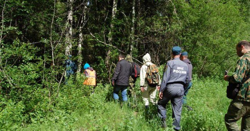 В лесу в Юрьянском районе Кировской области заблудился 67-летний грибник