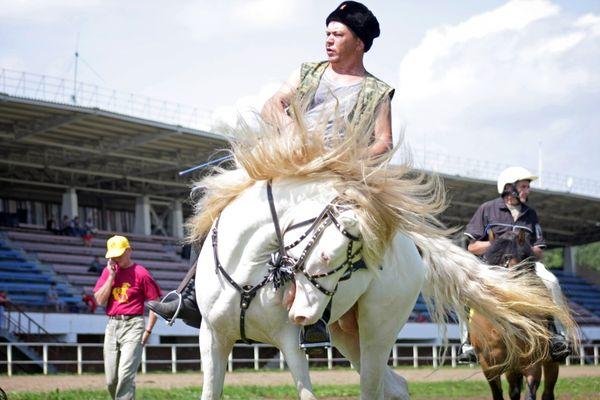 В Кирово-Чепецком районе Кировской области пройдет фестиваль вятских лошадей