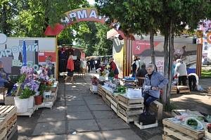 Городские власти обсудили с предпринимателями условия организации парковки на улице Комсомольской