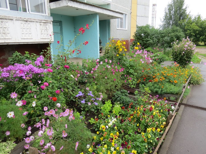 Киров — город северный, а цветет по-южному