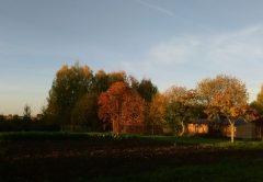 Осень октябрь