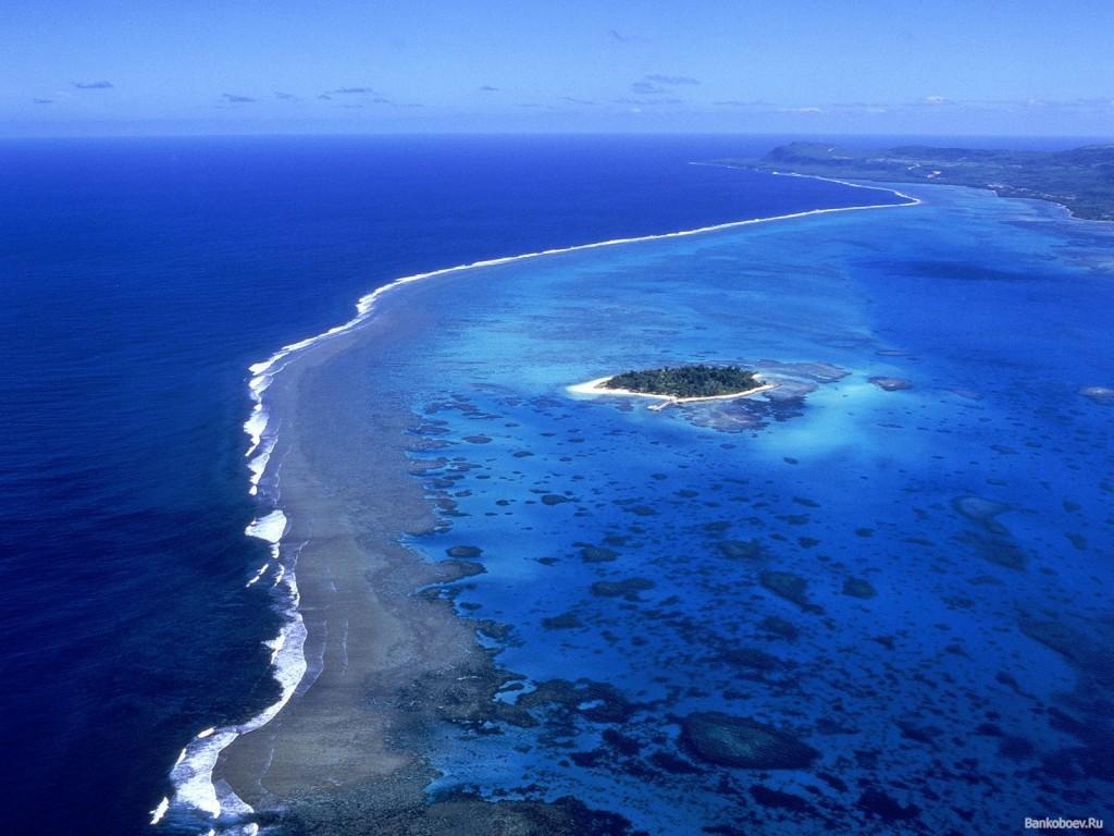 Ученые: Океаны заселяют таинственные формы жизни