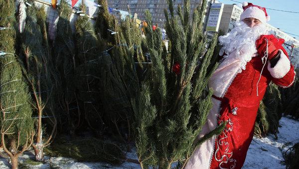 В преддверии 2016 года в Кирове откроется 10 ёлочных базаров