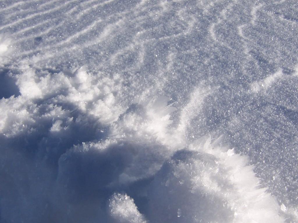 Число погибших из-за снегопадов в Японии увеличилось до 9 человек