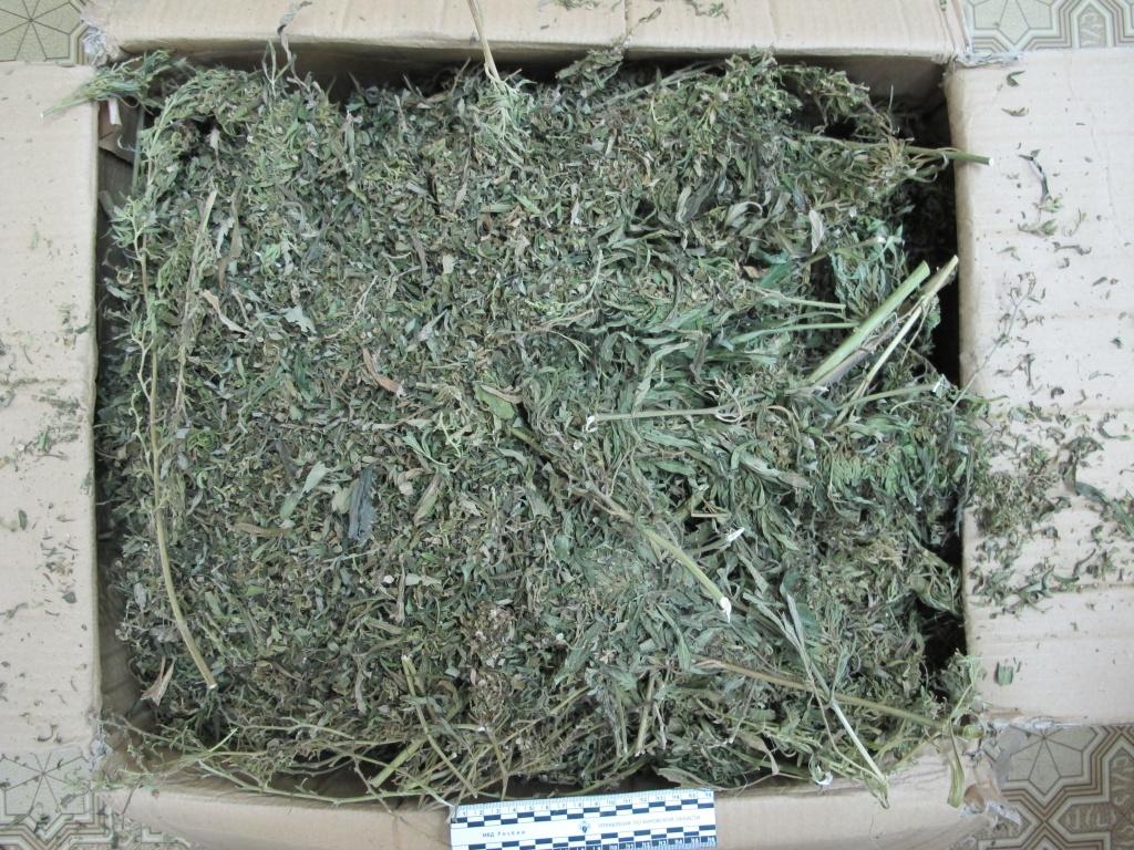 Житель Яранска хранил дома 2,6 кг марихуаны