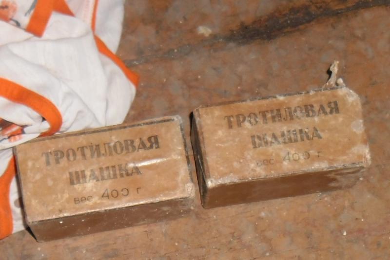 В Кирове мужчина прятал в диване тротиловые шашки