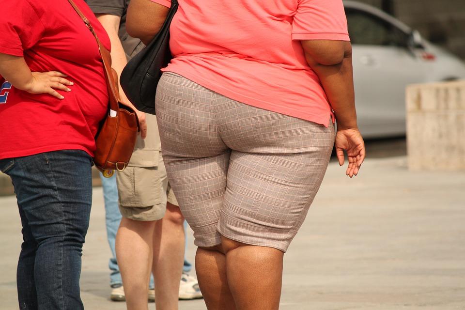 Ученые заявили, что ожирение приводит к изменениям в мозге