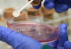 Заболеваемость острыми кишечными инфекциями в Кирове превысила среднее многолетнее значение