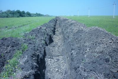 «СУ № 1» заплатит 17 млн рублей за нанесение ущерба природе
