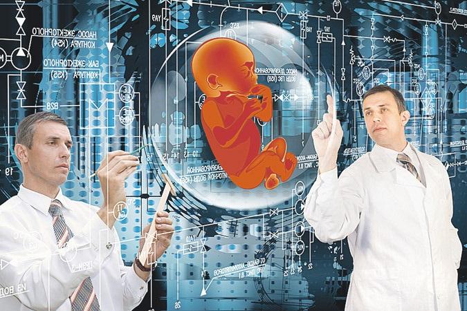 Ученые впервые вырастили в пробирке двухнедельный человеческий эмбрион