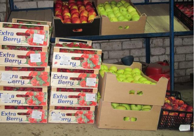 В Кирове уничтожили партию турецких помидоров и польских яблок
