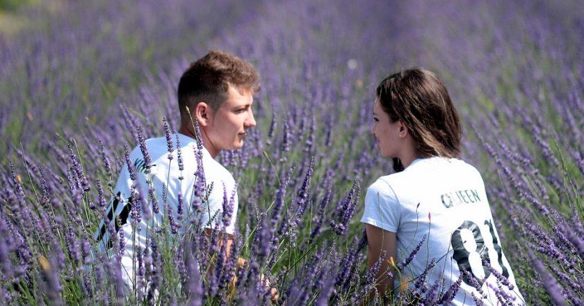 https://pixabay.com/ru/пара-лаванда-любовь-романтика-1521404/