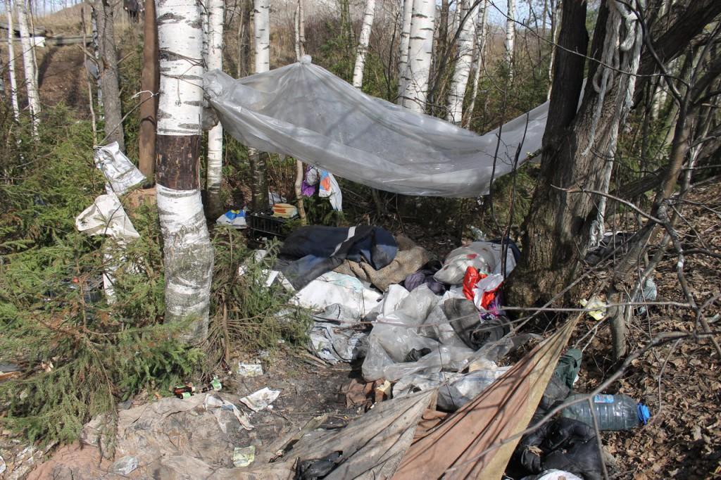 Для полигона ТБО ищут новое место в Кировской области