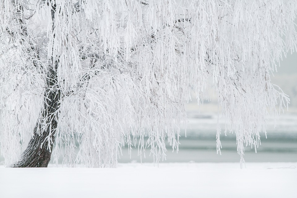 Учёные: Глобальное похолодание на Земле может начаться через 10 лет