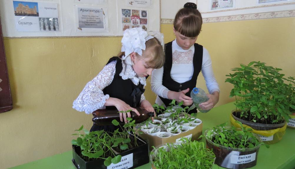 Школы Куменского района получили семена от Союза садоводов России