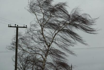 На субботу в Кирове объявили метеопредупреждение