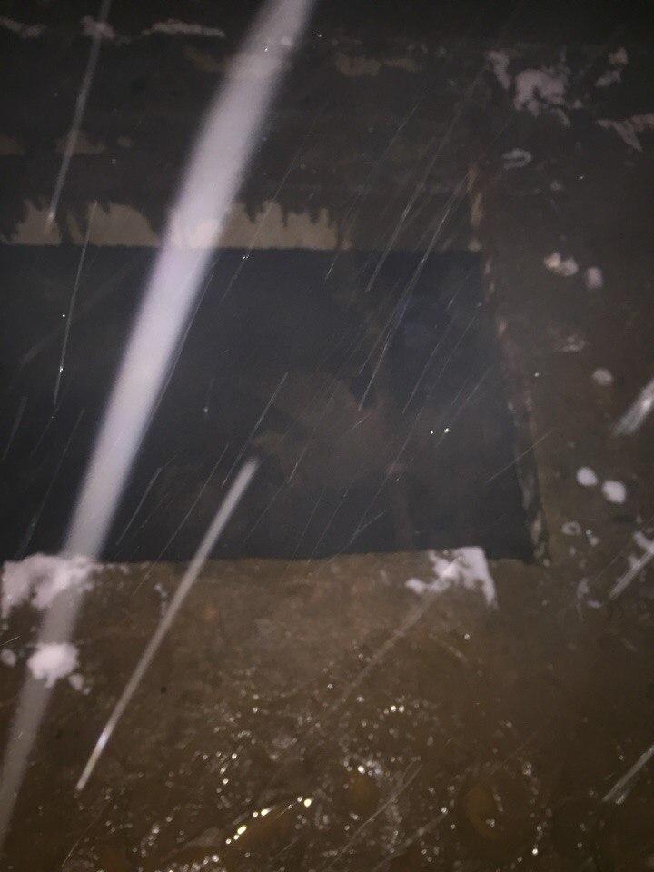 Организована доследственная проверка по факту обнаружения тел двух неустановленных мужчин в Октябрьском районе города Кирова