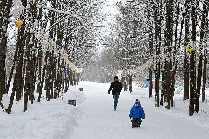 Новости в Кировской области 25 декабря – Новый вариант. Новости в Кировской области 25 декабря – Новый вариант.