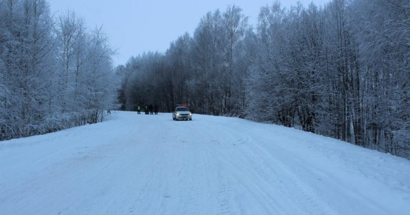 В Советском районе водитель снегохода врезался в дерево и погиб