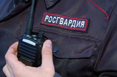 Вчера в Кирове росгвардейцы задержали двух пьяных водителей