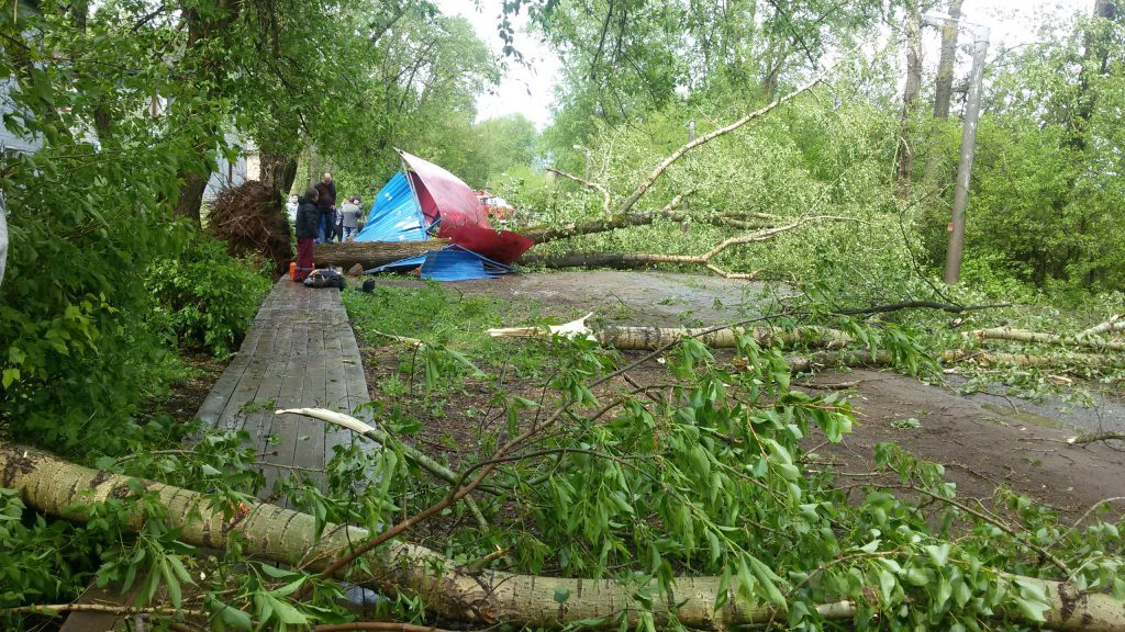 Ураган повалил деревья в Кирове