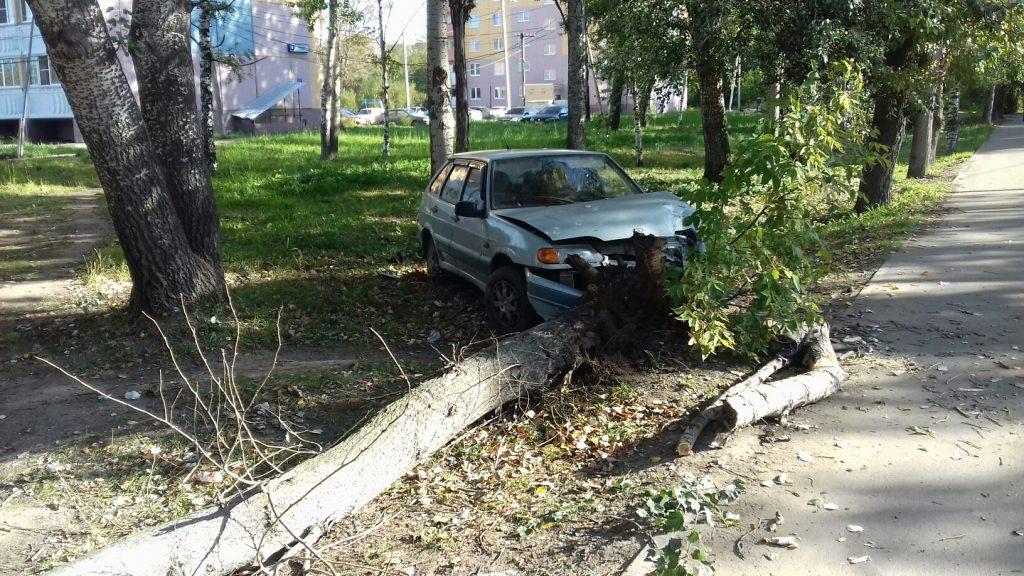 В Кирове ночной гонщик снес дерево