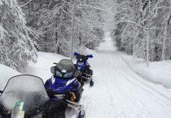 Кировчанин отдал 270 тысяч рублей за несуществующий снегоход