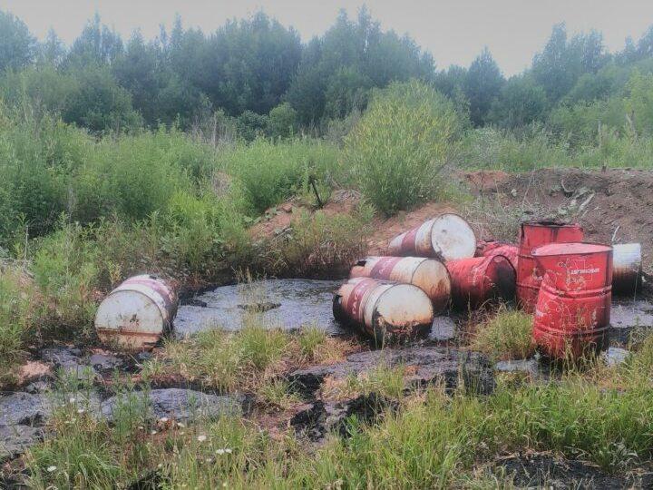 Вместо артезианской скважины в Кирово-Чепецком районе активисты ОНФ обнаружили токсичное «болото»