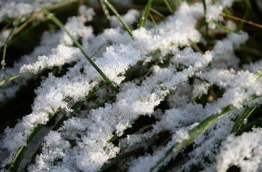 В конце недели в Кирове может выпасть первый снег