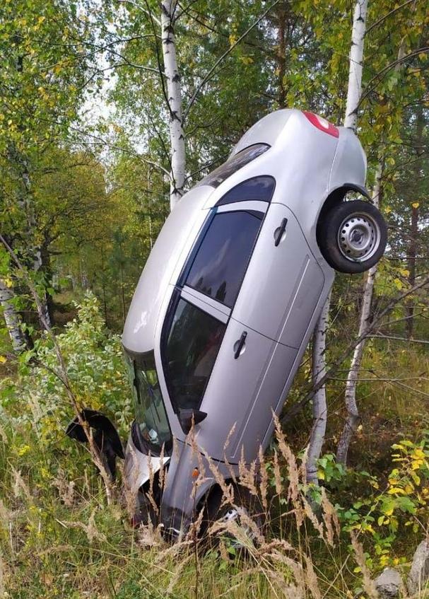 В Яранском районе «Лада» вылетела с дороги и забралась на дерево