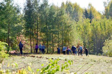В Дендропарке создадут питомник коллекционных растений