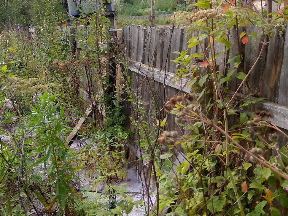 В Куменском районе в местную речку сливают белую пену