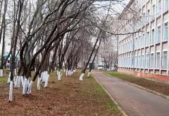 Родители школьников: «В Кирове разыскивается насильник-педофил»