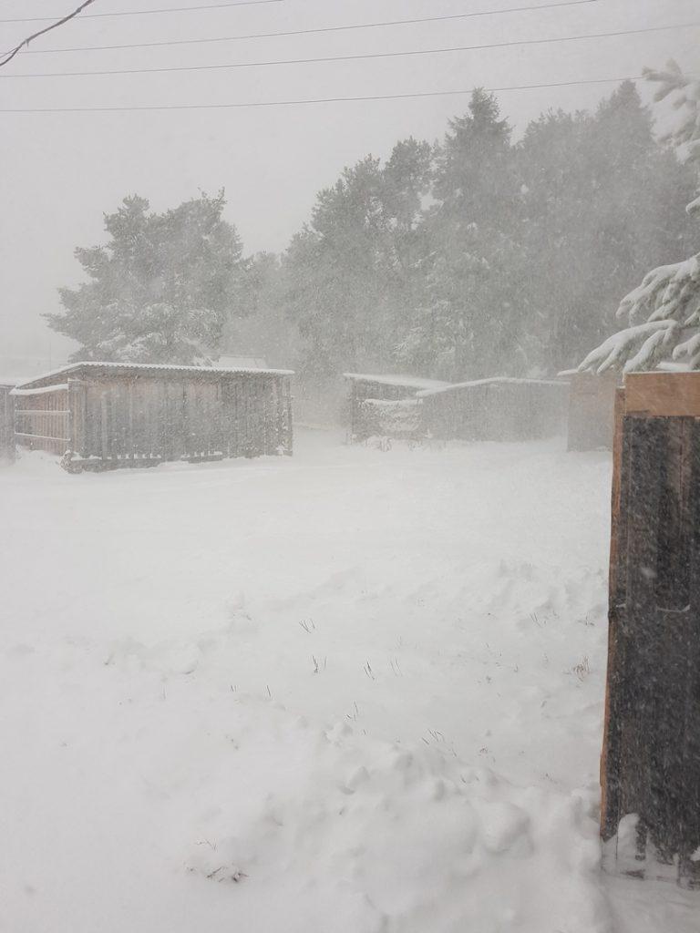 Север Кировской области завалило снегом