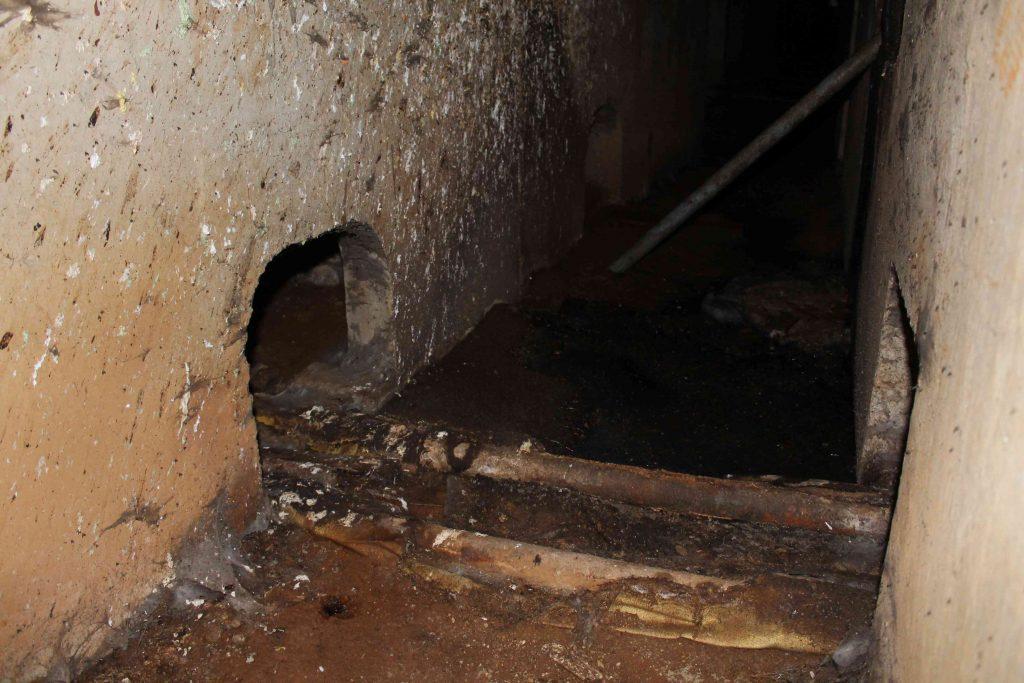 В подвале пятиэтажки на Воровского образовалось <озеро> с червями