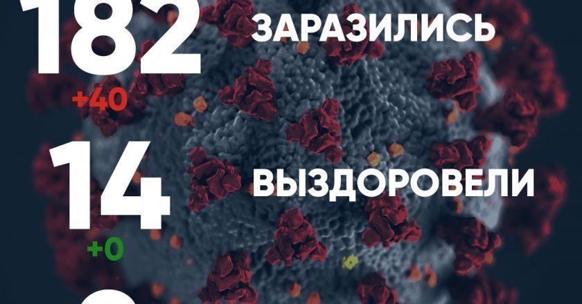 Число заболевших коронавирусом в Кировской области выросло до 182
