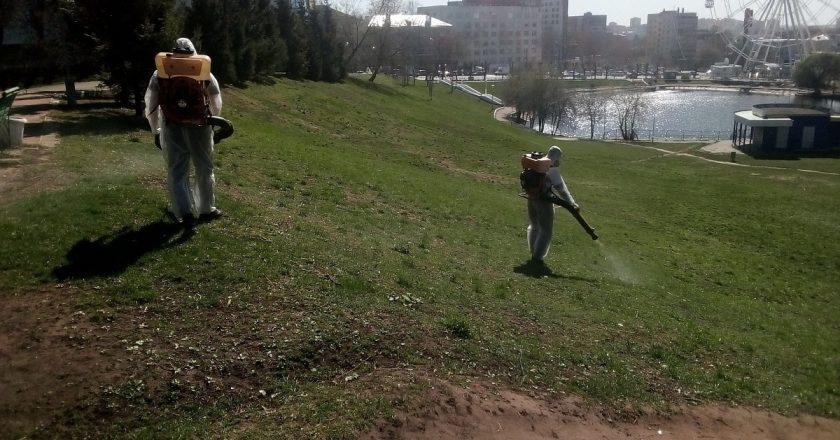 В Кирове завершают первый этап обработки от клещей