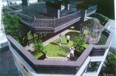 В Кирове опубликован проект многоэтажки с деревьями на крыше