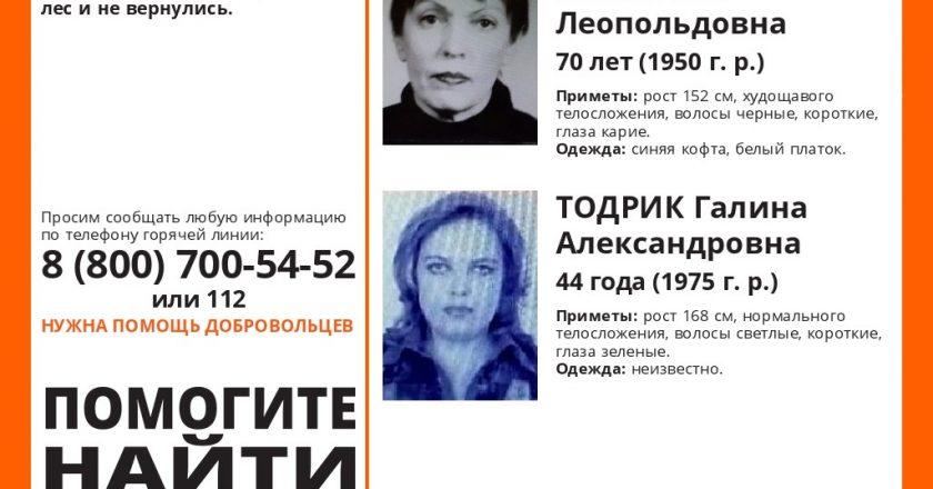 В Кировской области в лесу пропали две женщины