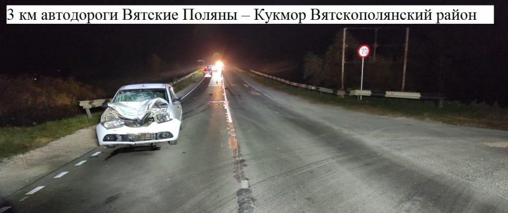 В Кировской области сбили насмерть двух пешеходов