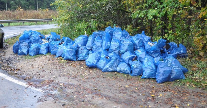 В Шабалинском районе после вмешательства прокуратуры ликвидировано 7 несанкционированных свалок бытовых отходов