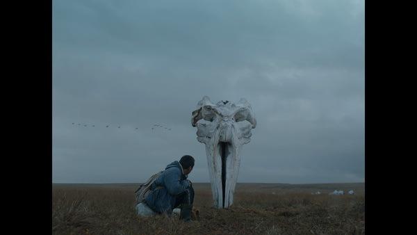 Кировчане одними из первых увидели фильм «Китобой»