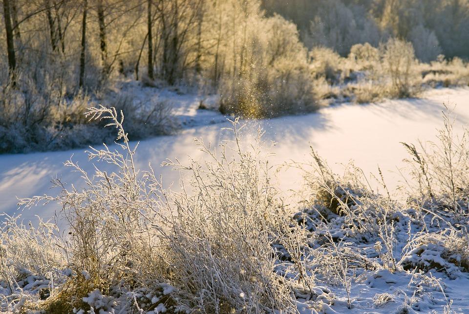 прогноз на ноябрь в Кировской области