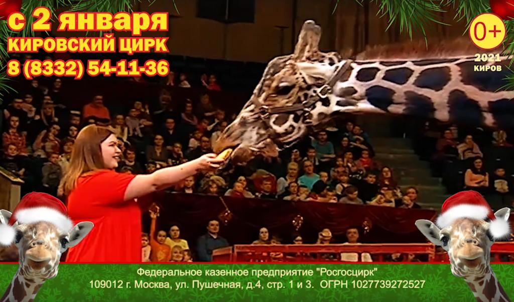 В Кирове разрешили цирк и концерты